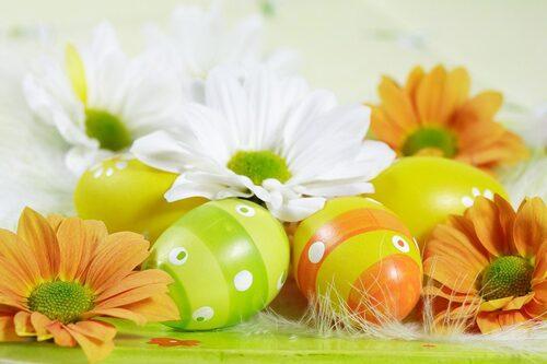 La Pâquerette fleur de Pâques
