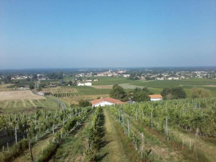 paysage de Gironde