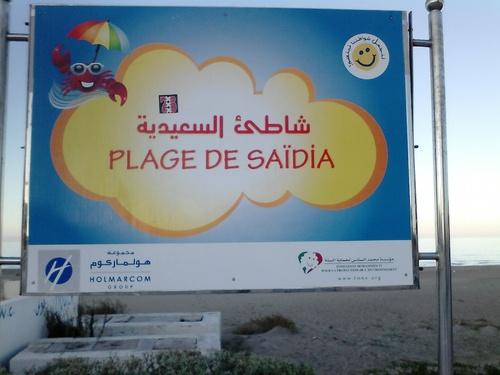 SAIDIA (suite)