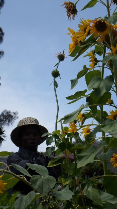 rwanda-nziza-oui-mon-coeur-bat-encore