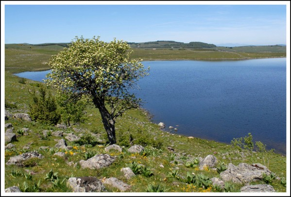 Lac-st-Andeol.jpg