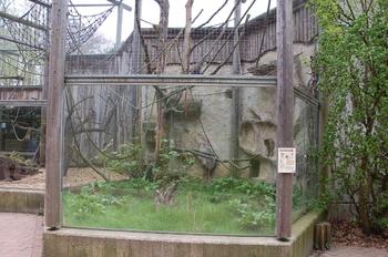 Zoo Osnabruck d50 2012 248