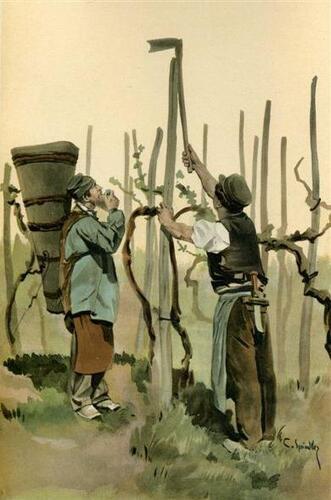 Les costumes alsaciens 95 : Vignerons