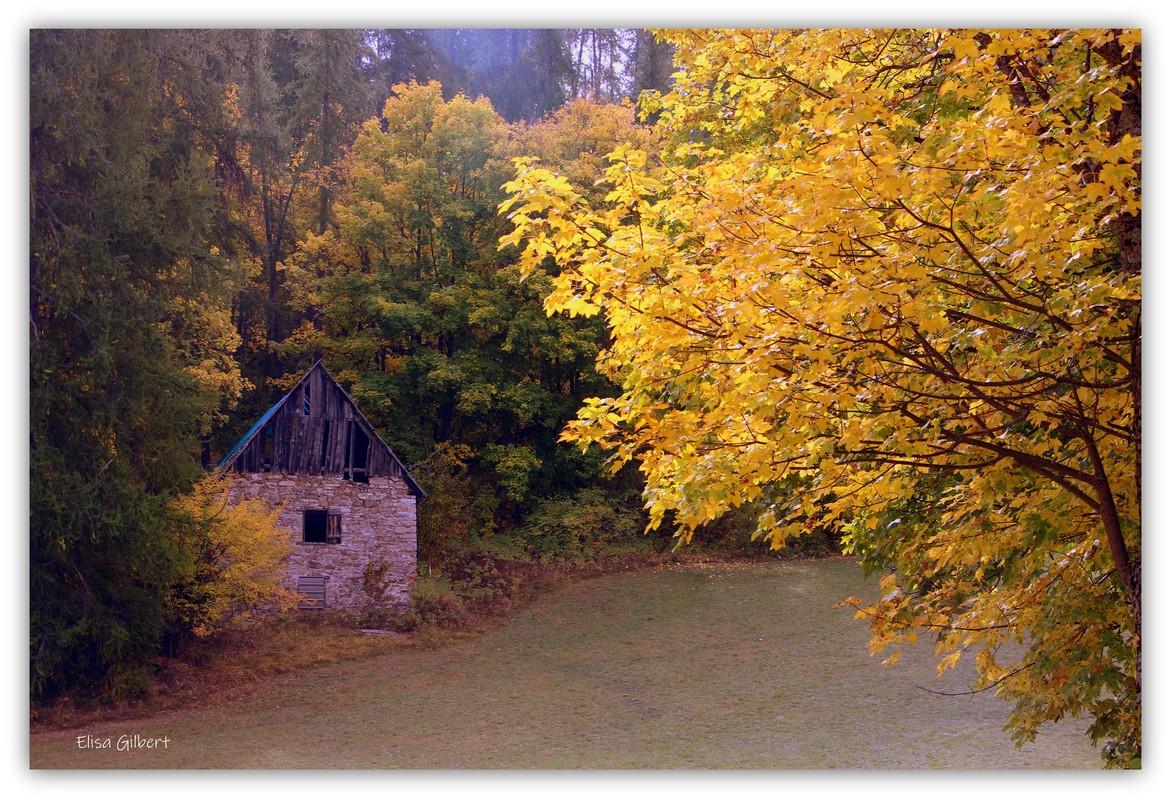 Descente sur Colmar les Alpes