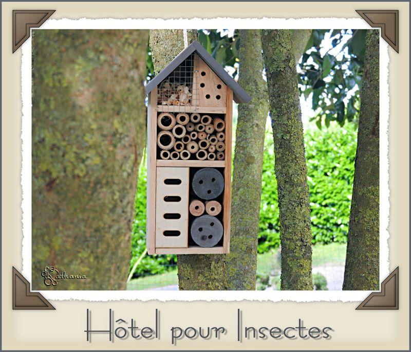 Un hôtel dans notre jardin