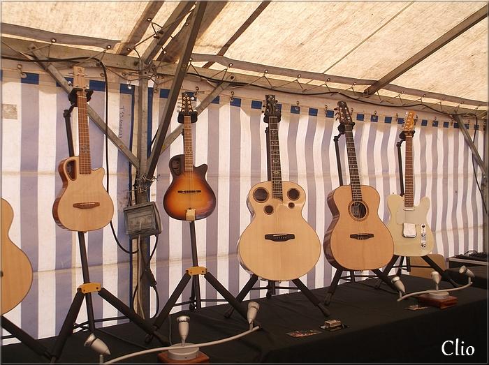 Luthiers et guitares