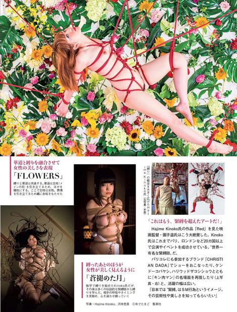 Magazine : ( [Flash] - |10/01/2017| )