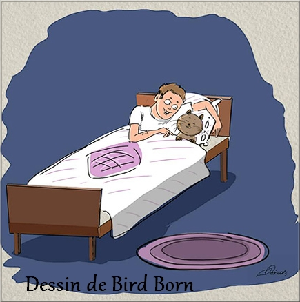 Chat ou chien avec le dessinateur Bird Born