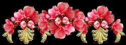 Défi de Nathie  La floraison de Sakuras