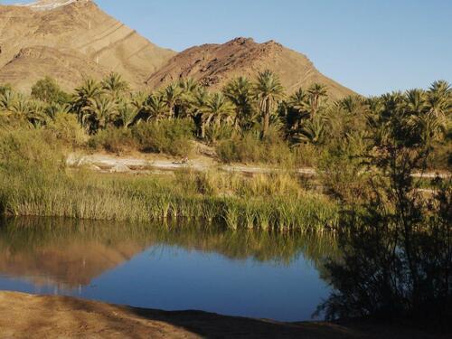 Le Djebel se mire dans les eaux de l'oued Draa