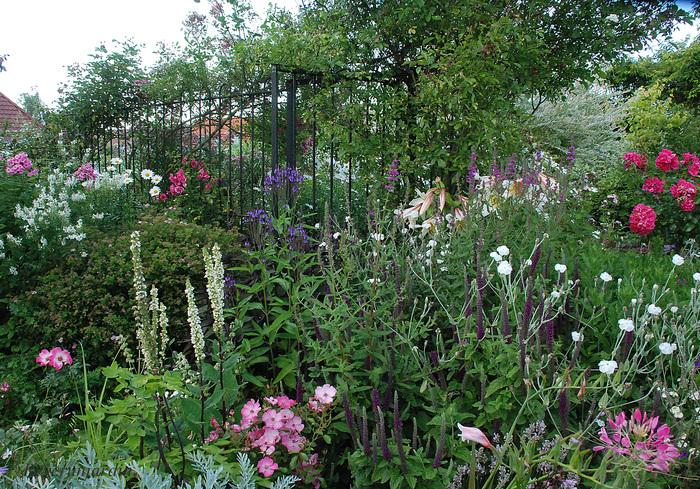 Un jardin comme Hautefois