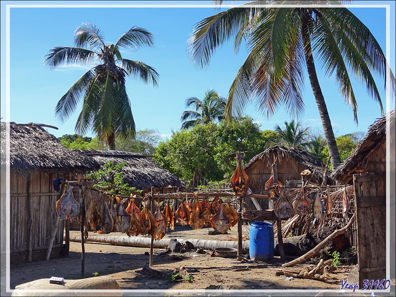 Poissons séchés - Grande Mitsio - Madagascar