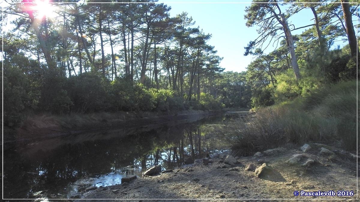 Les Réservoirs de Piraillan - Octobre 2016 - 2/10
