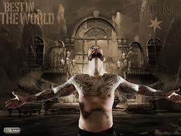 Mon superstar:Cm Punk