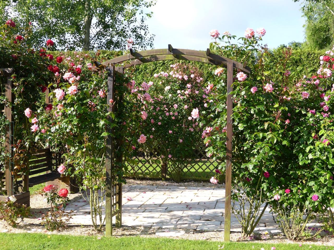 Au jardin de mon coeur ... une roseraie ...