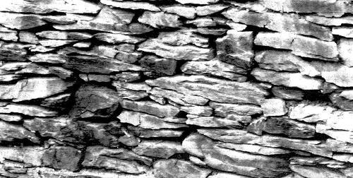 Mur de pierres sèches (Rechrival)