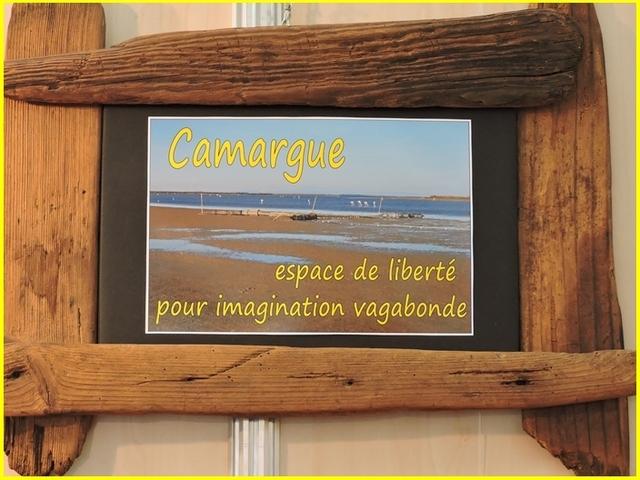 Festival de la Camargue 2016 suite......