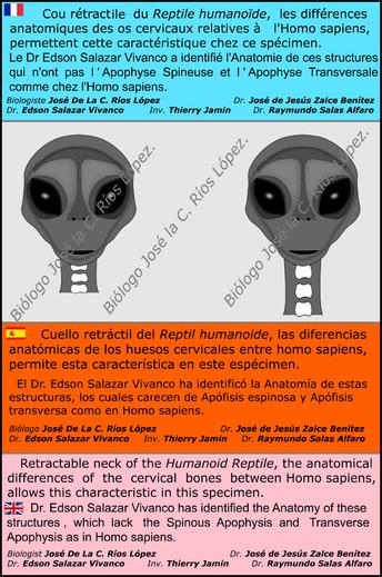 """ALIEN PROJECT - Les """"momies"""" du Pérou /4"""
