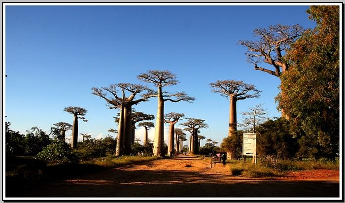 Madagascar couchers de soleil