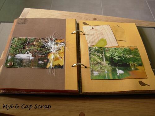 Caps : Couleurs d'automne 2010
