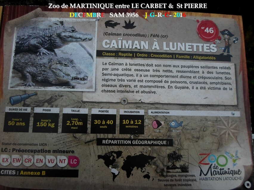 ZOO de MARTINIQUE 2/5 - 7/15  LE CARBET  972      D  12/11/2017