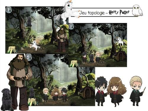 Jeu de topologie - La forêt interdite Harry Potter