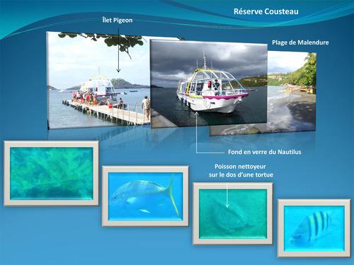 Voyage sur le Nautilus (bateau à fond de verre)