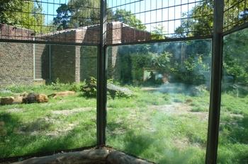 Zoo Duisburg 2012 617
