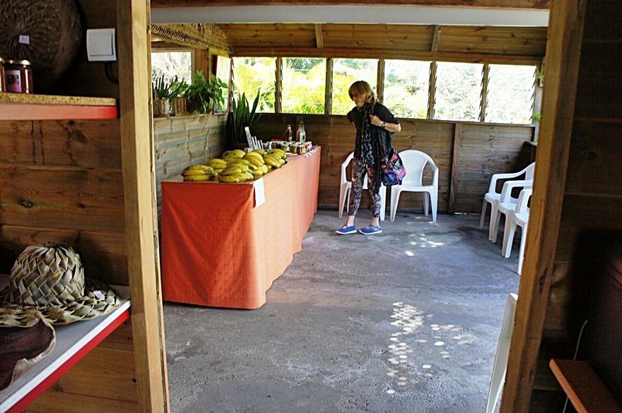 14/2/19 : Jardin des 1001 saveurs à la Réunion (5/7)...