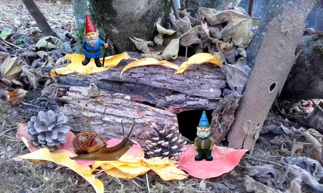 Gnomes et Escargot 2