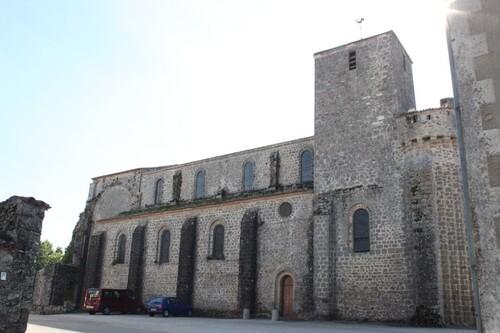 824 - Insolite insulaire à Oléron !