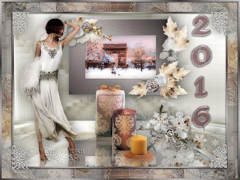 bonne année 6-2016