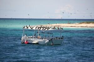 Plongée Mickaelmas Cay 0 (315)