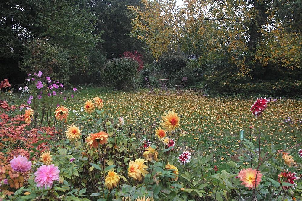 Jardin automnal