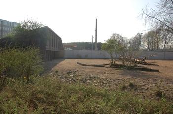 zoo cologne d50 2012 002