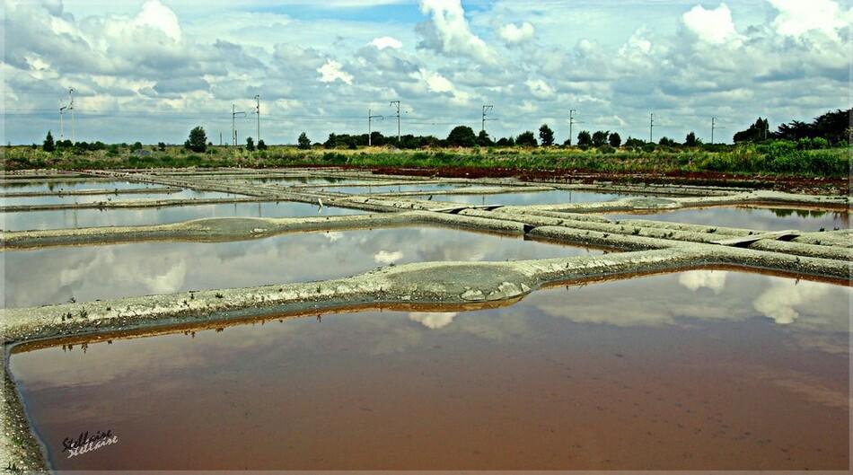 Les marais salans (Guérande)