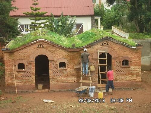 Toit végétal, green roof