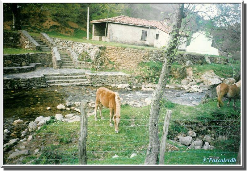 Vall_e_de_l_Urizate18_vall_e_barrio_Aritzacun_village_abandonn_