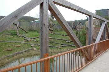 Zoo Osnabruck d50 2012 067