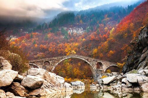 Quand la nature embellit les ponts