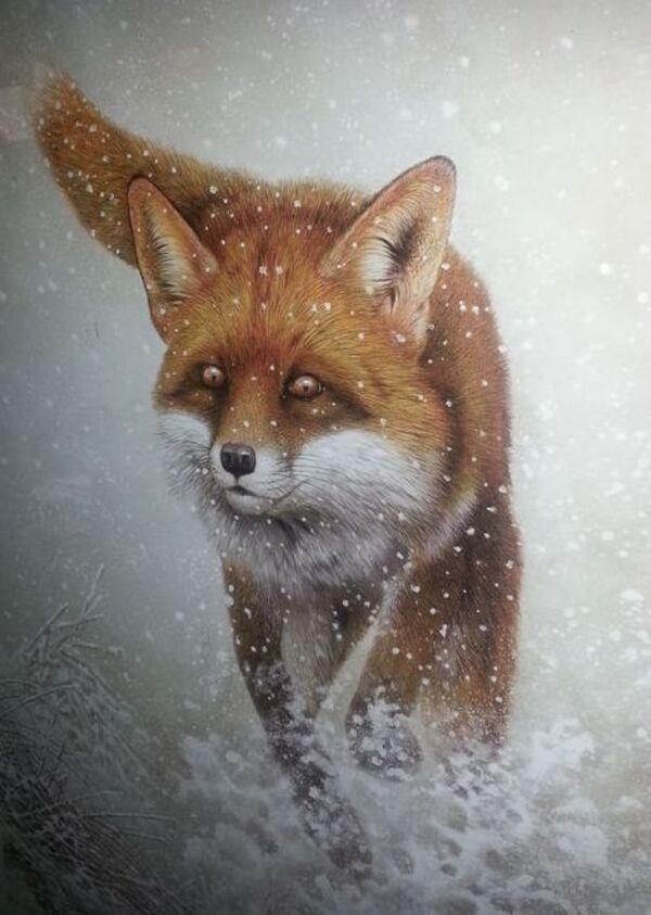 Peinture animalière d' André Buzin