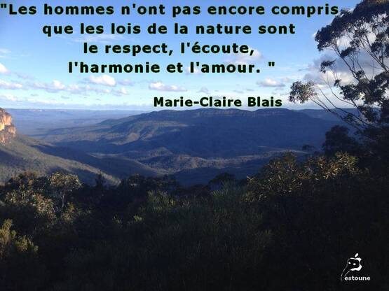 Citation de Marie-Claire Blais ; L'instant fragile (1995)