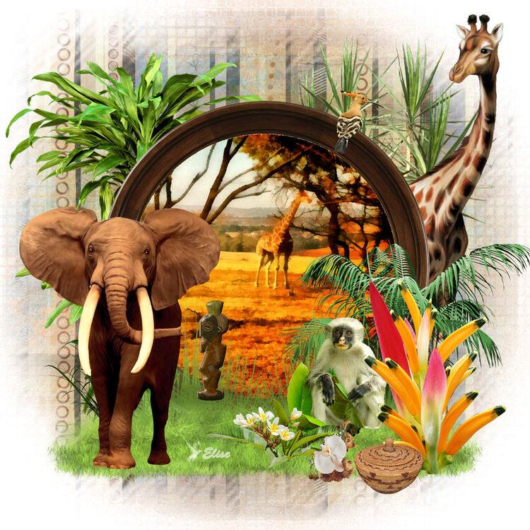 la beauté de l' Afrique
