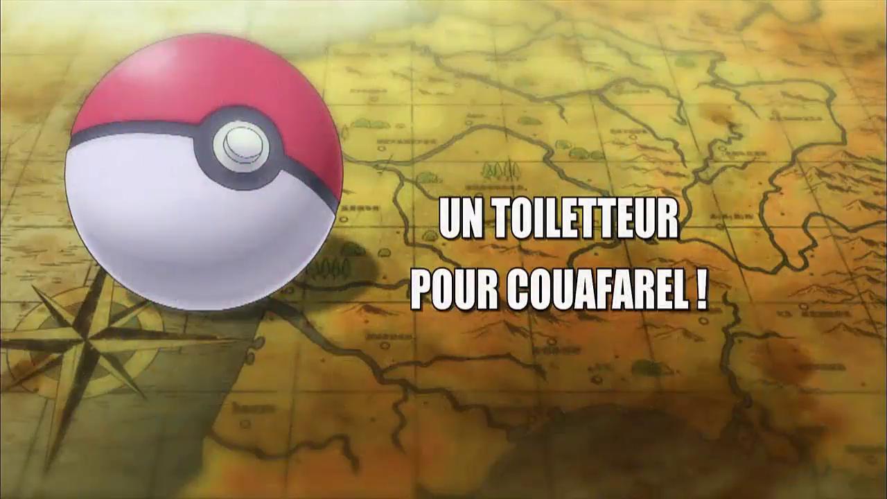 08 Un toiletteur pour Couafarel !