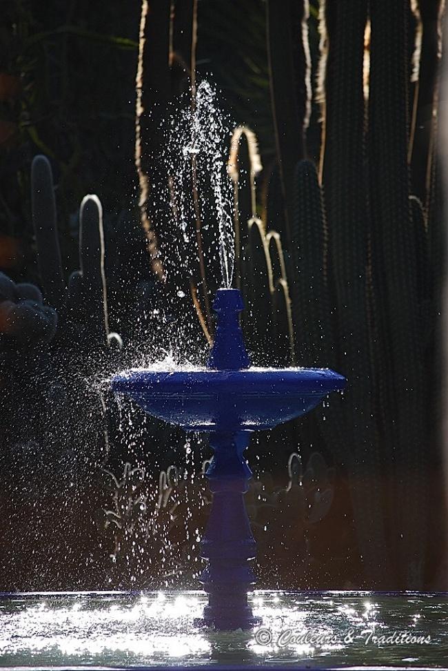 Le jardin autour des points d'eau