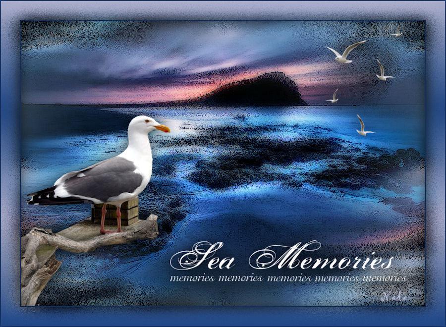 Sea memories 191202015930824850