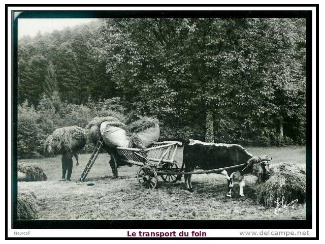 Blog de lisezmoi : Hello! Bienvenue sur mon blog!, la vie dans les Vosges au début du siecle