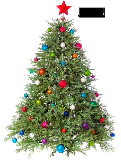 Tubes sapins Noël 7