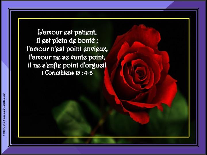 L'amour est patient - 1 Corinthiens 13 : 4-8