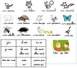 Productions d'écrits CP: Ecrire une phrase simple par jour